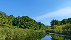 """River """"Schwentine"""" near Wellingdorf... (Lullabay 61) Tags: deutschland herbst landschaft kiel schleswigholstein naturschutzgebiet schwentine"""