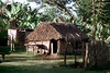 28-470 (ndpa / s. lundeen, archivist) Tags: house color building film fiji rural 35mm nick southpacific 28 thatchedroof 1970s 1972 dewolf oceania fijian pacificislands rurallife thatchroof nickdewolf photographbynickdewolf reel28