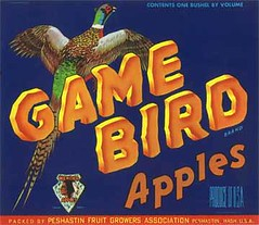 """Game Bird • <a style=""""font-size:0.8em;"""" href=""""http://www.flickr.com/photos/136320455@N08/21460732312/"""" target=""""_blank"""">View on Flickr</a>"""