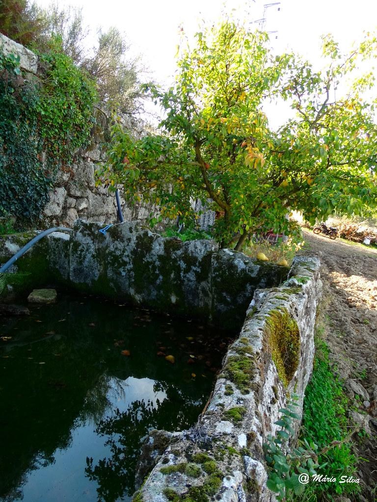 Águas Frias (Chaves) - ... o tanque ...