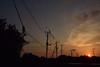 20150928_009_2 (まさちゃん) Tags: silhouette 夕陽 電線 夕焼け シルエット 烏 カラス 電柱 長閑 茜色 夕焼け空