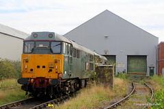 105. 31452 and 31190 at Washwood Heath. 23-Sept-15. Ref-D114-P105 (paulfuller128) Tags: train birmingham cornwall railway class devon heath locomotive 31 dcr 31452 washwood