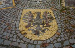 Freiburg meine Heimat