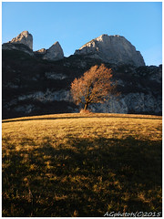 Autumn (AGTphotos) Tags: autumn mountain nature berg landscape prada autunno montagna trentino paganella