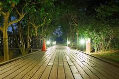 2015-11-17 17.42.02 (pang yu liu) Tags: 2015 11 nov 十一月 八德 pond park 埤塘 公園 voigtlander night f28 flare light 星芒 桃園 taoyuan ecology eco 生態 175mm bade