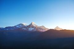 Annapurna Himal (elenaleong) Tags: nepal sunrise matterhorn himalayas fishtail acap poonhill snowpeaks annapurnasouth hiunchuli annapurnahimal annapurnarange hiuchuli nepaljomsomtrekking machhappuche hilmalays
