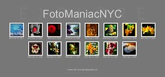 EXPLORE (FotoManiacNYC) Tags: explore bestofthebest top500
