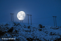 Moon setting (Jokull) Tags: morning blue winter moon mountain snow bird nature landscape photography flying iceland sitting outdoor sigma poles traveling vk phototour reynisfjall photoguide 150600mm sonya7rii