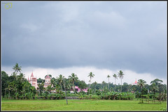 Just before the rain (Jogesh S) Tags: cloud india rain canon paddy coconut outdoor churches kerala monsoon greenery approved rains keralam 6d കേരളം adoor മഴ canonef2470mmf28liiusm