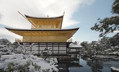 KINKAKU (GOLDEN PAVILION), ROKUONJI: Kyoto, 1398 (rebuild:1975) (wakiiii) Tags: