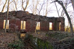 (elisecavicchi) Tags: winter sunset sunlight fern mill backlight forest gold canal moss ruins glow stones january maryland growth frame alive deciduous brilliant poolesville tschiffely