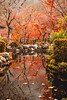 Momiji II (Aicbon) Tags: verde kyoto kioto autum otoño december momiji leaves hojas rojo orange naranja tardor lagow ater reflejo arboles trees arbres nature naturaleza beauty japan japon nipon asia canon eos 500d 50mm 14