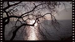 Inverno sul lago (Claudio T1) Tags: lombardia lago italia europe europa wordpress photoword photoaward colori colors cielo cloudswirl colorphotoaward color foto natura italy iseo