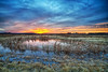 Wetlands Circle (Kansas Poetry (Patrick)) Tags: wetlands bakerwetlands lawrenceks kansas patrickemerson