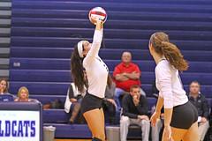 IMG_8333 (SJH Foto) Tags: girls volleyball high school york delone catholic team teen teenager setter