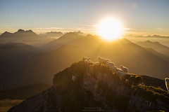 Sunset at Scharfreiter N°4 (Bernhard_Thum) Tags: bernhardthum thum sunset sunsetlight scharfreiter karwendel bavarianalps alps nature elitephotography capturenature landscapesdreams distagon352zf distagont235 zf