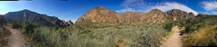Big Bend-Chisos Basin Window trail panorama Nov 2016 (1 of 1)