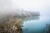 Moor und See im Novemberkleid (K.H.Reichert) Tags: moor hoarfrost see reflection spiegelung nebel fog frost dust raureif frozen neuburganderdonau bayern deutschland de