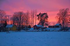 After the sunset (RdeUppsala) Tags: uppland countryside houses cielo clouds campo casas hus winter vinter invierno sverige sweden suecia sunset atardecer skymning himmel moln dusk twilight trees träd árboles paisaje landscape landskap