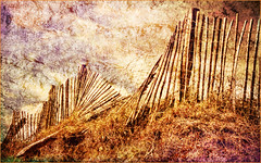 In Need of Repair (williamwalton001) Tags: fineart fence sky sand grasses beach texture trolled legacy