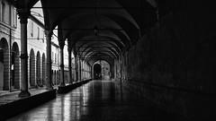 Bologna (Ale*66*) Tags: bologna italy portici blackandwhite monochrome architettura architecture
