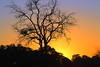 Kwai Sunset (chanel.mason_sa) Tags: sunset kwairiver botswana