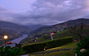 A view on the Douro River and Valley, Portugal (Alona Azaria) Tags: portugal casacanilhas dourovalley vineyards green nikond800 1635mmf4 nikon nikkor mesaofrio worldheritagesite unesco ngc
