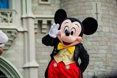 DSC_0125_WS (SureAsLiz) Tags: disney disneyworld waltdisneyworld wdw magickingdom magickingdomwelcomeshow letthemagicbegin mickey mouse cinderella castle