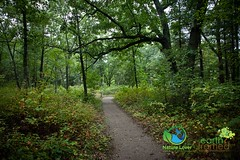 2016-Pinery-Provincial-Park-Riverside-Trail-Fall-Ontario-3550