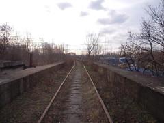 DSCN5296 (TajemniczaIstota761) Tags: abandoned railway viaduct wiadukt kolejowy