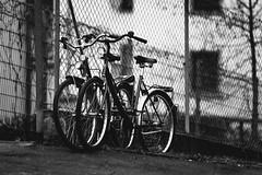 Two-Wheel Romance (Thomas Listl) Tags: thomaslistl blackandwhite noiretblanc biancoenegro bikes bicycle street fence hff mood tele 200mm