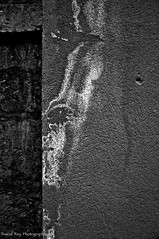 "Lucifer au pied de la Tour Rose au 16 rue du Boeuf, LYON 69005.       ""Out Demons out"" The Edgar Broughton Band (Pascal Rey Photographies) Tags: lyon lugdunum vieuxlyon streetart streetphotography moisissure salpêtre devil shaytan satan lucifer blackwhite blancoynegro noirblanc noiretblanc schwarzundweiss nikon nb d700 digikam digikamusers linux ubuntu opensource freesoftware city villes murs murales muros walls texture abstact abstraction art abstractionphotographiecontemporaine abstract abstraite artcontemporain photos photographie photography photographiecontemporaine pascalreyphotographies"