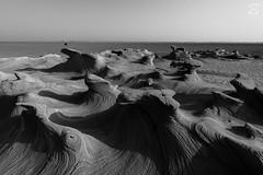 20150417-DSC_2864 (Sugesh Gopal) Tags: rock landscape blackwhite desert uae camel deserttraveller landscapeofuae