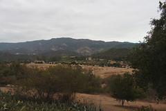Sulphur Mountain, across the Ojai Valley (rozoneill) Tags: california institute ojai theosophy krotona