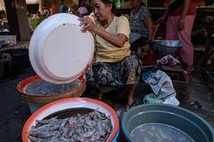 selling fish (grapfapan) Tags: street bali woman indonesia market candid bazar singaraja