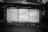 Secrets (LOVEducation) Tags: plants monochrome japan voigtlander f45 fujifilm 100 konica kansai secrets 15mm cv rf swh acros shirahama hexar superwideheliar