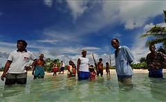 Day 119 Abaiang Kiribati rising seas make islands dissapear (GNDR) Tags: pacific disaster climatechange kiribati abaiang risingseas 365disasters