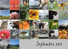 September 2015 Mosaic (keepps) Tags: mosaic month bighugelabs