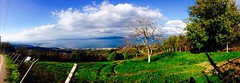 Karamürsel Tepeleri / Hills of Karamursel