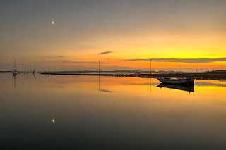 Harbour Tranquility