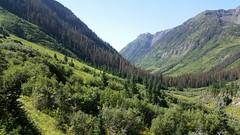5311 We continue hiking down the Emerald Lake Trail toward the lake (_JFR_) Tags: camping colorado hiking backpacking wilderness lakecreek weminuche weminuchewilderness sanjuannationalforest emeraldlaketrail