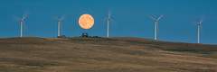 Alberta's Cowley Ridge (Explored) (WherezJeff) Tags: cowley north nordex n60 turbines july pinchercreek summer alberta bluemoon fullmoon pano turbine wind moon canada foothills environment renewable windpower sky alternative energy