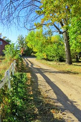 Country Lane (Patricia Henschen) Tags: canoncitycolorado colonorchard fall autumn orchard color leafpeeping aspen colorado usroute50