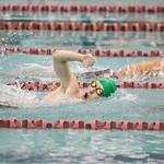 Spring Valley State Swim