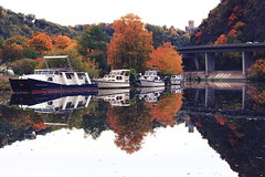 Autumnal Reflections (Lord Demise) Tags: water colors leaves canon reflections river germany deutschland boot 50mm harbor boat wasser colours autum harbour yacht laub herbst 50 hafen fluss blätter spiegelung autumnal lahn farben reflexionen lahnstein 500d