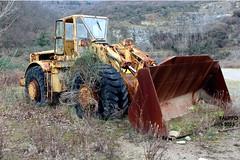 Caterpillar 988 (Falippo) Tags: wild abandoned cat rusty caterpillar earthmover ruggine abbandono wheelloader escavatrice palagommata