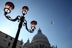 VENEZIA, 2015 (Ale (ale66lo)) Tags: venice italy italia basilica salute cupola laguna venezia lampione veneto serenissima