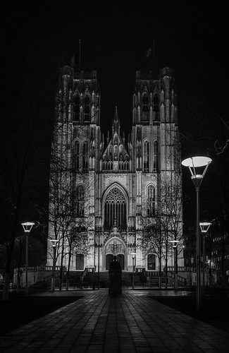 Project 366 - 357/366: Cathedral of St. Michael and St. Gudula - Brussels