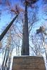 IMG_3104 (wozischra) Tags: berlin heiligensee spaziergang baumberge höchster baum altheiligensee
