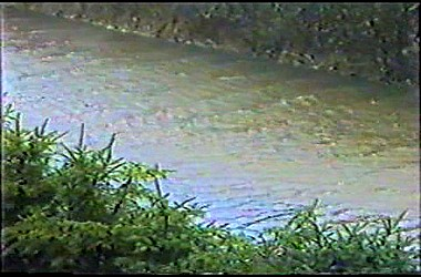sturmflut 89NDVD_014